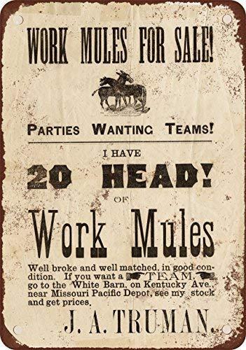 SIGNCHAT 1884 - Cartel de Metal con Texto en inglés Mulas ...