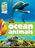 Animal Planet Ocean Animals (Animal Bites Series)