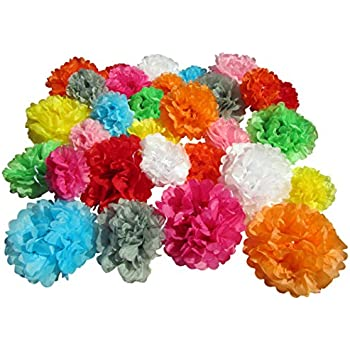 Amazon cinco de mayo decorations fiesta tissue pom paper use4party tissue paper pom poms set of 30 pcs pre folded paper decoration for party wedding birthday bridal baby showers mexican fiesta 6 8 10 inch mightylinksfo