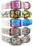 C4 Fashion Dog Collar - Sunflower Pattern - Waterproof & Guaranteed for Life - for Boy & Girl Dogs Sizes Small - X-Large - Metal Buckle (Medium)