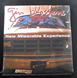 Gin Blossoms - New Miserable Experience - Lp Vinyl Record