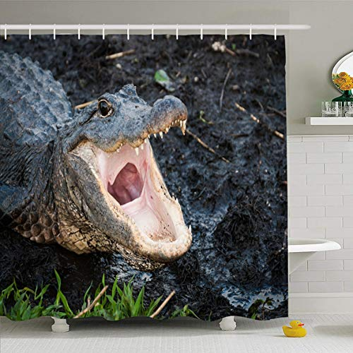 - Ahawoso Shower Curtain 66x72 Inches Mouth Pink Aliigator Alligator Open Wide Everglades Reptile Gator Florida American Eyes Design Waterproof Polyester Fabric Set with Hooks