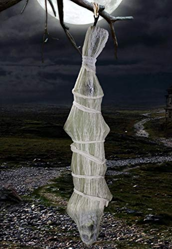 Halloween Door Decorations Mummy (Celebrate A Holiday 72 inch Cocoon Corpse Hanging Halloween Decoration - Spooky Outdoor Halloween Decor - Scary Halloween Prop Can Also Be Used Indoor - Halloween Skeleton for Outdoor Haunted)