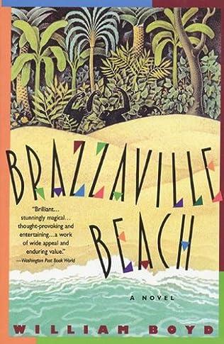 book cover of Brazzaville Beach