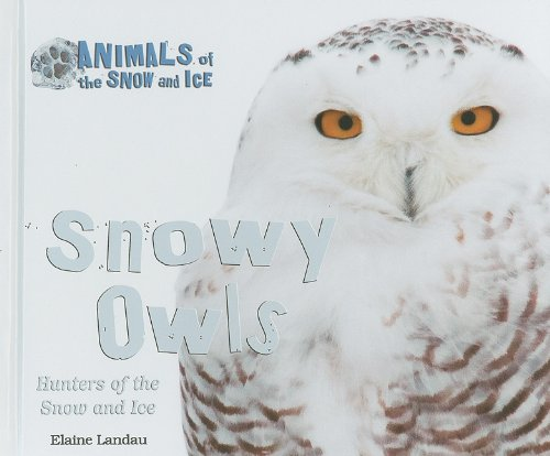 Snowy Owls: Hunters of the Snow and Ice (Animals of the Snow and Ice)