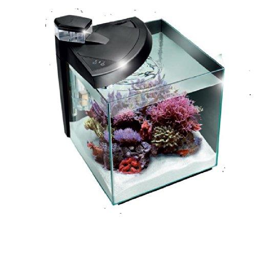 Newa 30 Reef-Acquario completo colore: nero