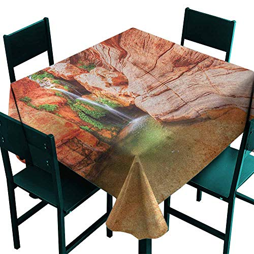 Warm Family Americana Washable Table Cloth Elves Chasm Colorado River Plateau Creek Grand Canyon Image Print Great for Buffet Table W63 x L63 Scarlet Green Pale ()