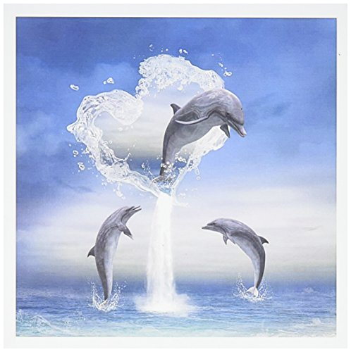 Dolphin Card - 3dRose Greeting Cards, 6 x 6