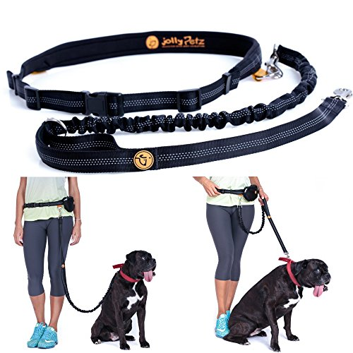 Jollypetz-Best-Bungee-Dog-Leash-with-Adjustable-Waist-Belt-Perfect-Dog-Hiking-Gear-and-for-Walking-and-Running-Hands-Free-BONUS-Light-Pouch-Accessory-and-FREE-EBOOK-with-Exercising-and-Training-Tips