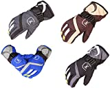 Making Up Ski Gloves Thick Warm Cold Winter Motorcycle Gloves Waterproof (color)