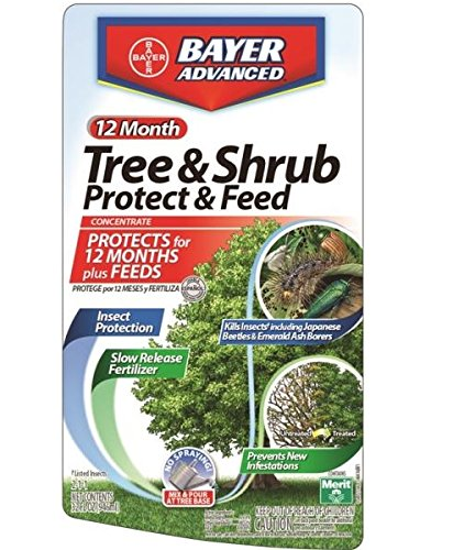 Bayer Advanced 701810m Concentrate Tree And Shrub Protect With Feed, 32 Oz (Pack of 48)