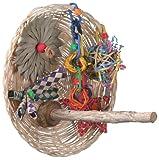 Super Bird Creations 9-1/2 by 9-1/2-Inch Busy Birdie Play Perch Bird Toy, Medium, My Pet Supplies