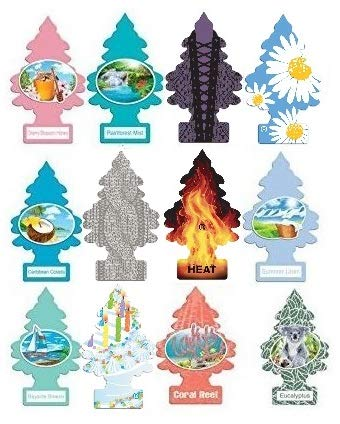 (Little Trees Home and Car Air Fresheners 12 Pack Vacation Pack Ultra Rare Scents )