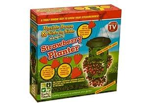 PMS 195-383 - Kit de cultivo en casa (fresa)