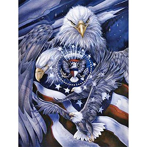 DIY 5D Diamond Painting Kit, Full Drill American Flag Eagle Embroidery Cross Stitch Arts Craft Canvas Wall Decor 8x10 inch / 20x25 cm ()