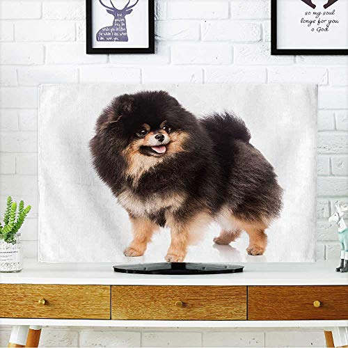 (PRUNUS Protect Your TV Cute Pomeranian Spitz on White Background Protect Your TV W35 x H55 INCH/TV 60