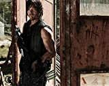 The Walking Dead Hardcover Ruled Journal - Daryl Dixon (Insights Journals)