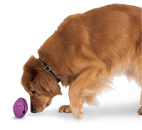 PetSafe Busy Buddy Twist 'n Treat 5