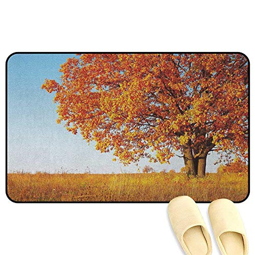 (homecoco Fall Entrance Mat Lonely and Ancient Oak Tree Grass Bushes Field Serene Rural Scenery Orange Yellow Pale Blue Indoor/Outdoor/Front Door/Bathroom Mats Rubber Non Slip W31 x L47 INCH)