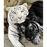 LICSE 5D DIY Diamond Painting Full Square Drill Embroidery Black and White Tiger for Wall Decoration 10X12 inches
