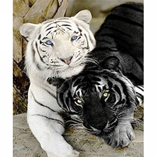LICSE 5D DIY Diamond Painting Full Square Drill Embroidery Black and White Tiger for Wall Decoration 10X12 inches by LICSE