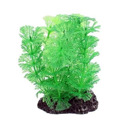 eDealMax 5 piezas del tanque del acuario de plástico Verde hierba Planta Decoración 4.1 Altura w