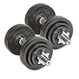 Omnie 65 LBS Adjustable Dumbbells with Gloss Finish and Secure Fit Collars for Crossfit WOD Weightlifting and Bodybuilding for Health Fitness and Flexibility (65 LBS Pair)