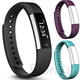 Fbandz Altum Fitness Tracker + 2 Extra Color Replacement Bands Steps Distance Calories Call Alert iOS & Android App (purple - teal)