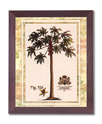 Framed Cherry Tropical Palm Tree Fig 526 Contemporary Pictures Art Print