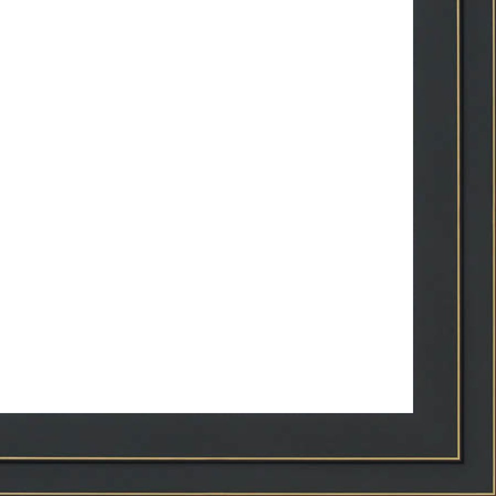 18x36 - 18 x 36 Black and Gold Pinstripe Solid Wood Frame with UV Framer's Acrylic & Foam Board Backing - Great For a Photo, Poster, Painting, Document, or Mirror