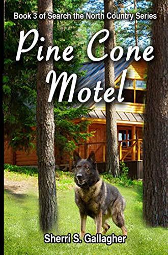 Pine Cone Motel (Search the North Country Book 3)