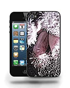 Coral Reef Sea Ocean Rocks Phone Case Cover Designs for iPhone 5 Kimberly Kurzendoerfer