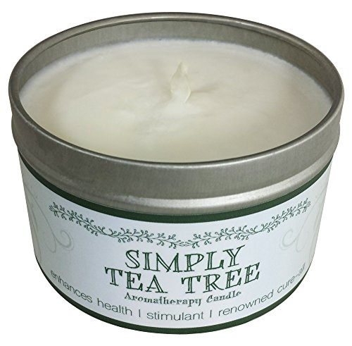 Price comparison product image Our Own Candle Company Soy Wax Aromatherapy Candle,  Simply Tea Tree,  6.5 Ounce