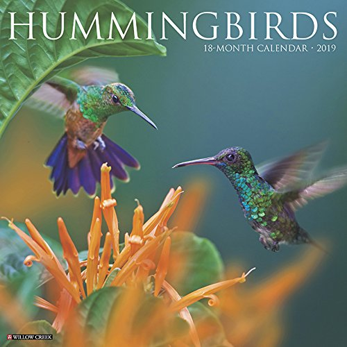 Hummingbirds 2019 Wall Calendar