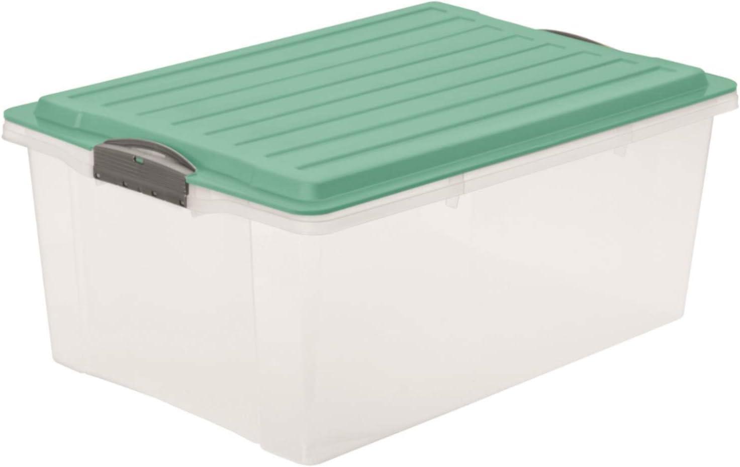 Rotho 1767705094 - Caja de almacenaje compacta con tapa, de ...
