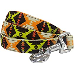 """Blueberry Pet 2 Colors Vintage Tribal Pattern Dog Leash with Soft & Comfortable Handle, 5 ft x 3/4"""", Extravagant Orange, Medium, Leashes for Dogs"""