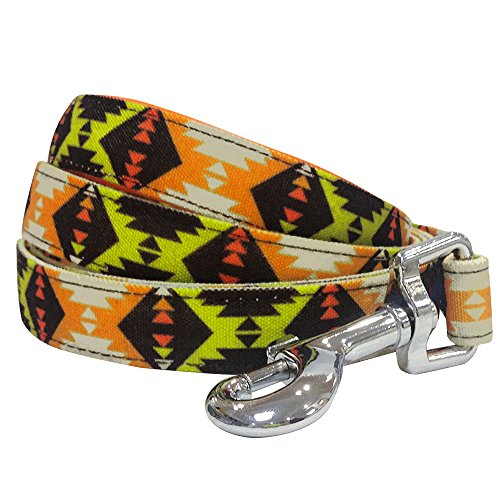 Blueberry Pet 2 Colors Vintage Tribal Pattern Dog Leash Soft & Comfortable Handle, 5 ft x 3/4