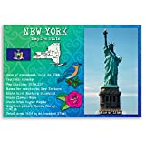 new york postcards - NEW YORK STATE FACTS postcard set of 20 identical postcards. Post cards Made in USA.