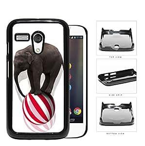 Circus Elephant Balancing On Ball Hard Plastic Snap On Cell Phone Case Motorola Moto G