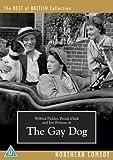 The Gay Dog [DVD] (1954)