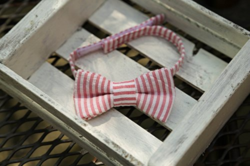 (Red Seersucker Bow Tie (Red & White))