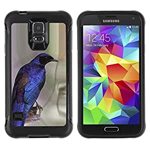 Suave TPU Caso Carcasa de Caucho Funda para Samsung Galaxy S5 SM-G900 / vibrant purple blue bird feathers wings / STRONG