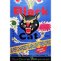 Vintage Black Cat Poster, Super Charged Flashlight Fireworks, The Best You Can Get