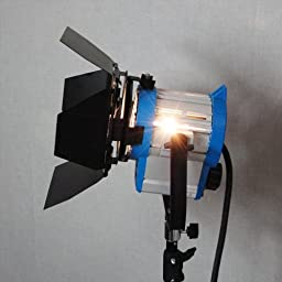 LimoStudio 950 Watts Photo Video Studio Tungsten Fresnel Continuous Spot Light Studio Lighting Kit, AGG1104