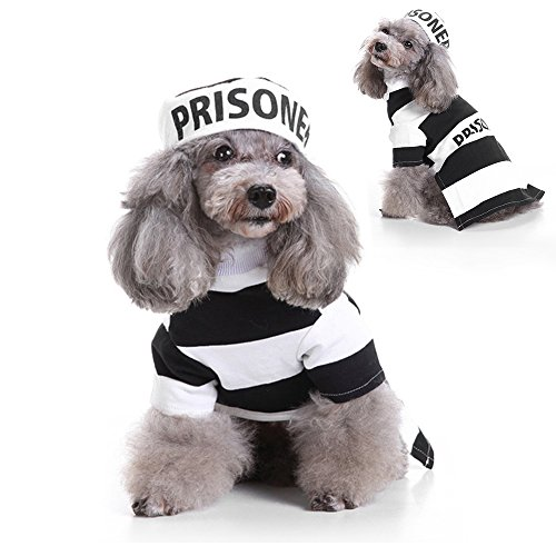 Prisoner Dog Pet Costumes (LUCKSTAR Prisoner Dog Costume - Prison Pooch Dog Halloween Costume Party Pet Dog Costume Clothes Cosplay with Hat for Teddy / Pug / Chihuahua / Shih Tzu / Yorkshire Terriers / Cat (M))