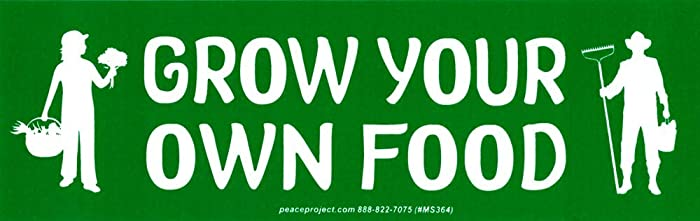 Grow Your Own Food - Small Bumper Sticker or Laptop Decal (6.5