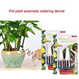 Qjoy Watering Stakes Automatic Watering System Plant Self Drip Irrigation Slow Release for Plants