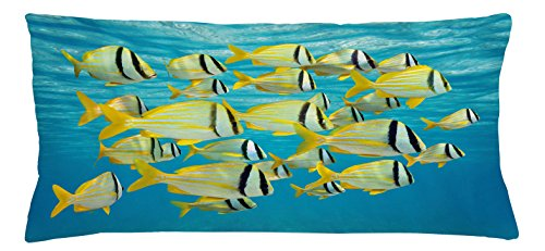 Fish Throw Pillow Cushion Cover by Lunarable, Atlantic Porkfishes with Tails and Forehead in Western Nocturnal Species Nature Imagery, Decorative Square Accent Pillow Case, 36 X 16 Inches, - Square Forehead