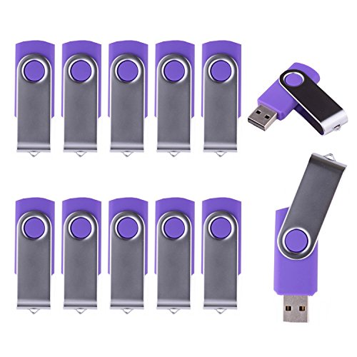 LHN® (Bulk 10 Pack) 8GB Swivel USB Flash Drive USB 2.0 Memory Stick (Purple)