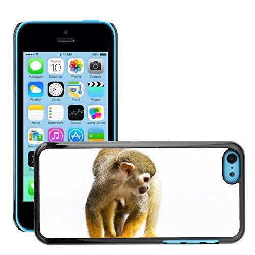 Just Phone Cases Hard plastica indietro Case Custodie Cover pelle protettiva Per // M00127565 Singe écureuil Amazon Rainforest // Apple iPhone 5C